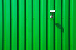 Leinwanddruck Bild - Kamera an grüner Fassade
