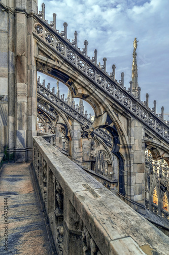 Staande foto Parijs Architectonic details from the famous Milan Cathedral, Italy
