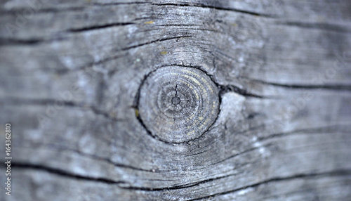 Fototapeta drewno struktura detal obraz