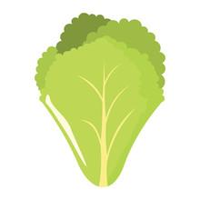 Salad Leaf Icon In Cartoon Fla...