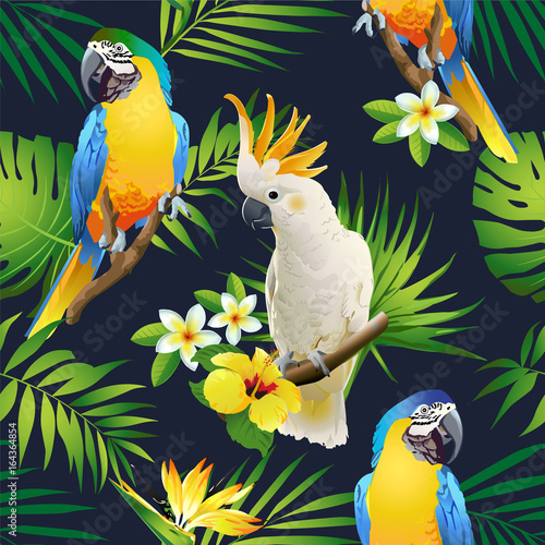 obraz dibond Seamless pattern of parrots cockatoo on the tropical branches with leaves and flowers on dark. Hand drawn vector