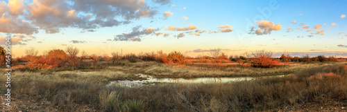 Garden Poster Texas Prarie Sunset
