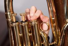 Fingers On Euphonium Valves Of...