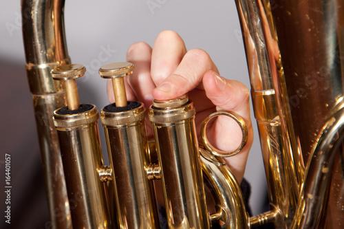 Fingers on euphonium valves of a horn. Wallpaper Mural