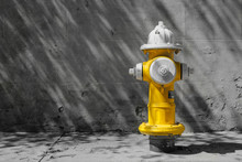 Fire Hydrant Charleston