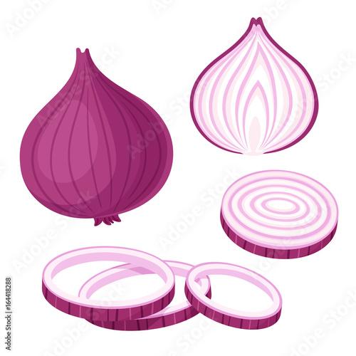 Obraz Red onion illustration set - fototapety do salonu