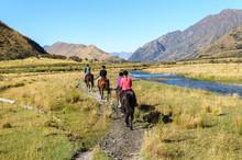 Horse Trekking Group