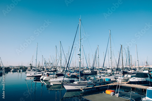 Fotografie, Obraz Sailboats and yachts in in harbor
