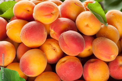 Foto Ripe apricots fruit with leaves background