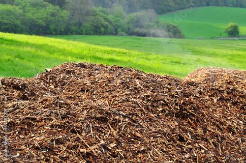 Photo Wood chips biomass nature