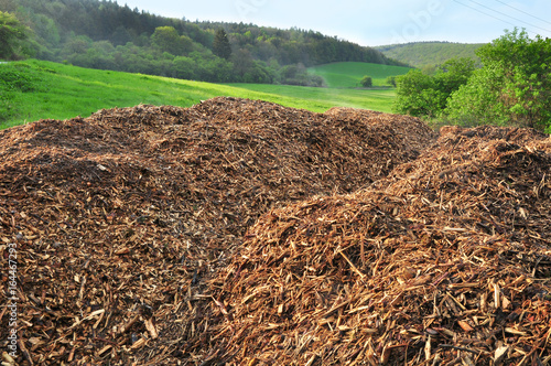 Fotografia, Obraz woodchips on pile nature bioamass