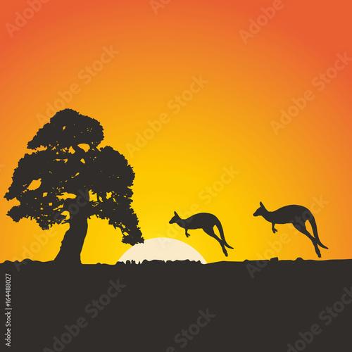 Foto op Aluminium Draken Africa, tree kangaroo, sun