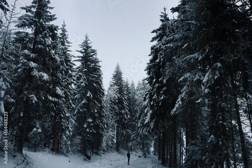 Fotografia, Obraz Processed with VSCOcam with g1 preset