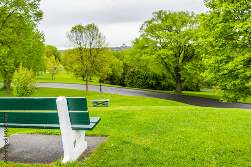 Empty bench in green plaines d'Abraham in morning during summer with road in Que Poster