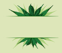 Cannabis Leafs Frame Hand Drawn. Vector Image.