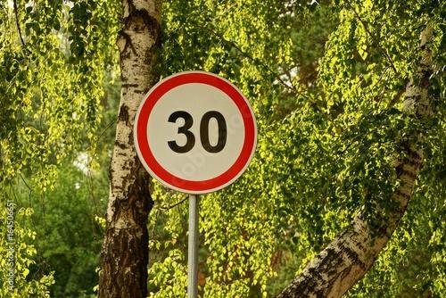 Fotografía  дорожный знак  ограничение скорости у дороги возле берёзового дерева