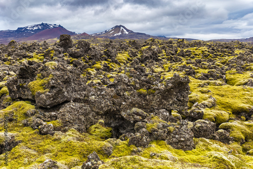 Berserkjahraun lava field in Snaefellsnes peninsula, Iceland Wallpaper Mural