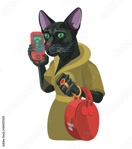 Black Cat Girl Talking On Mobile Phone Black Cat Girl Talking On A Mobile Phone She Is Very Attentive And Smart Great Lady To Make A Screensaver Who Is Calling You