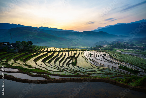 Fotobehang Rijstvelden Terraced rice field in morning in water season, the time before starting grow rice in Y Ty, Lao Cai province, Vietnam