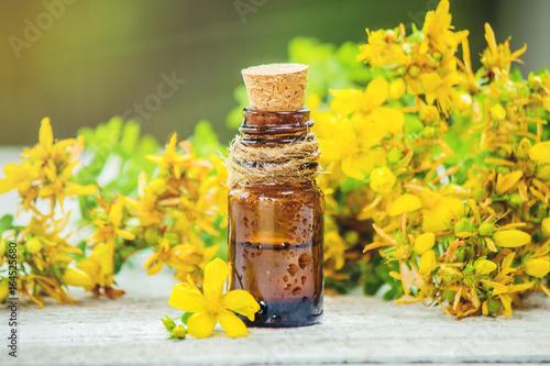 Fotografie, Obraz  St. John's wort extract. Medicinal plants. Selective focus.