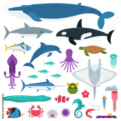 Fotografie, Obraz  Underwater animals and sea creatures in cartoon style