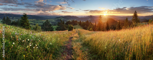 Poster Bergen Beautiful summer panoramic landscape in mountains - Pieniny / Tatras, Slovakia