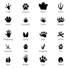 Black Footprints Shapes Of Ani...