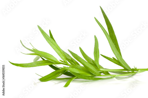 Photo Sprig of tarragon isolated on a white background