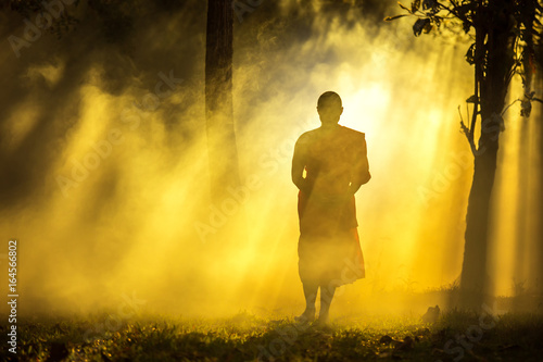Tablou Canvas Monk walking in temple meditating under a tree at Bangkok,buddhist temple in Tha