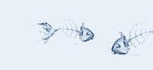 Two Water Fish Bones Talking I...