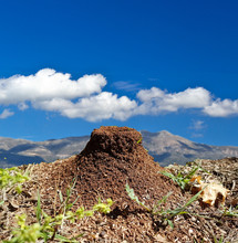 Anthill Ants Nest Hill Sky Clouds