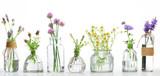 Fototapeta Kwiaty - Bottle of essential oil with herbs