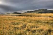 Safari Park - Maasai Mara - Ke...