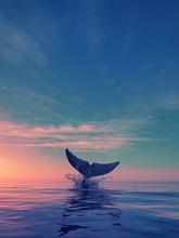A Whale Dives