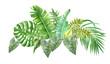 Leinwandbild Motiv watercolor border with tropical leaves