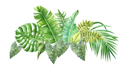 Naklejkawatercolor border with tropical leaves