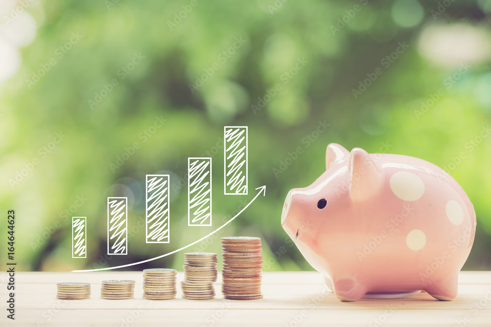Fototapeta Money coins stack growing graph and piggy bank nature background, business concept.
