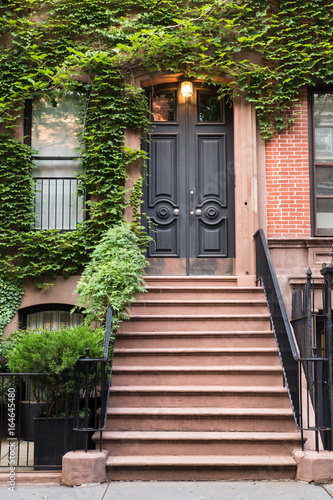 Ivy covered exterior door on New York City brownstone ...