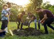 Leinwanddruck Bild - Group of people plant a tree together outdoors