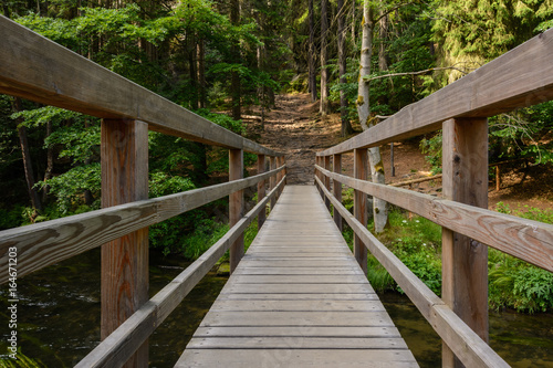 Photo  Wooden bridge over the river in the forest, Bohemian Switzerland National Park,