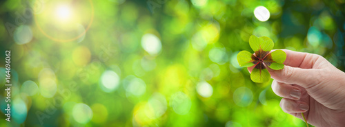 Fotomural Four leaf clover in womens hand