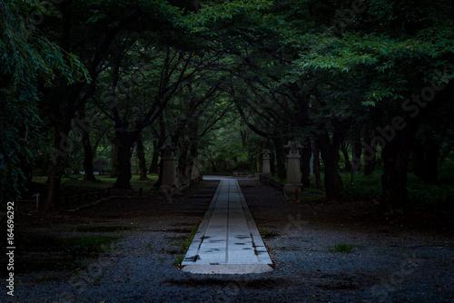 Obraz na płótnie 神社の道,  The shrine in silence in Japan