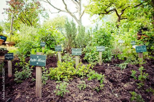 Foto auf Gartenposter Kräuter Kräutergarten
