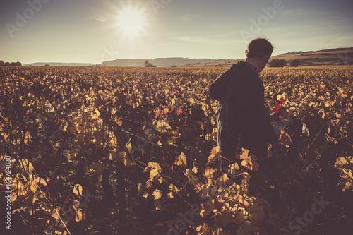 Fotografia  viticulteur