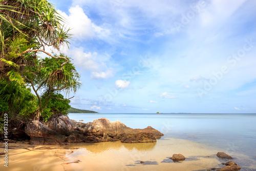 karimunjawa indonesia java beach coastline rocks Canvas Print