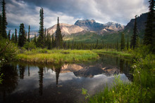 A Forest Pond Reflects The Mountains In Wrangell St. Elias National Park, Alaska.