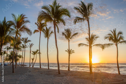 Photo sur Toile Plage Hawaiian sunset as seen from a beach with palm trees in silhouette