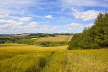 English Farming Landscape