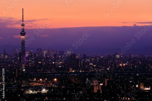 Poster Tokyo Tokyo night view
