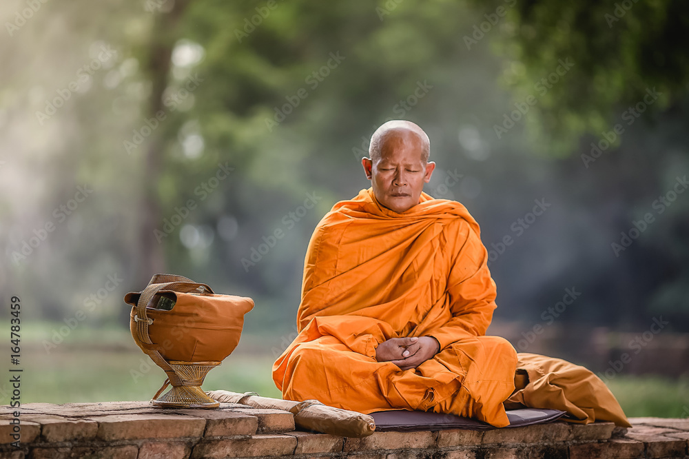 Fototapeta Asian monk meditating under a tree